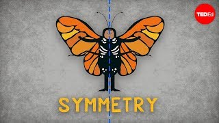 The science of symmetry