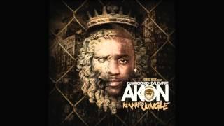 Akon - Konkrete Jungle - 01 - Used To Know Remix feat Gotye ,Money J,Frost