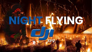DJI FPV - Night FLYING above Vineyards covered with FIRE candles (A7S3 & M2P)