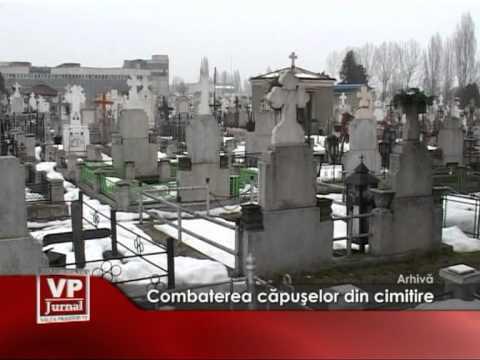 Combaterea capuselor din cimitire