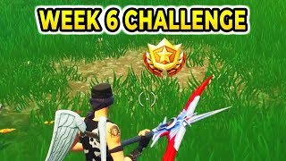 """Search between a Playground, Campsite and Footprint'' Location Fortnite Week 6 Challenges"