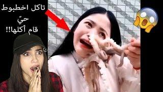 ناس يأكلون اخطبوط عايش هاجم البنت 😭