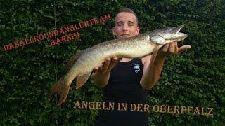 Angeln in der Oberpfalz   Forellen im kleinem Fluss
