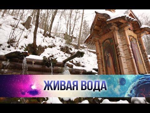 Храм агапита печерского в михайловке волгоградской обл