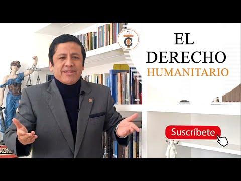 EL DERECHO INTERNACIONAL HUMANITARIO - TC163