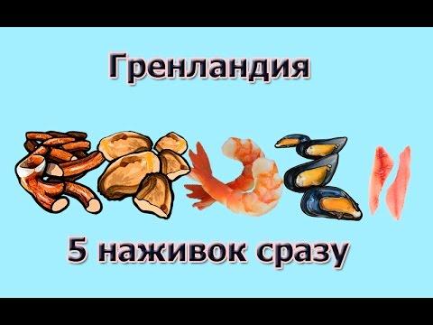 Русская Рыбалка 3.99 Гренландия. 5 наживок в одном месте