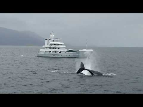 video of Hike Expedition Yacht