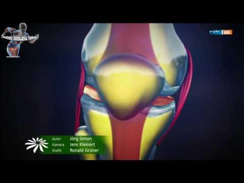 Il motivo per cui le articolazioni fanno male e come trattare