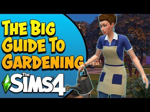 The Sims 4 Gardening Guide  (Base Game & Seasons)