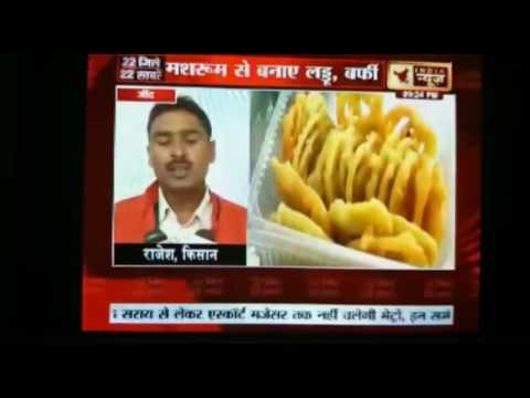 Ashok Kumar in conversation with India news Haryana channel
