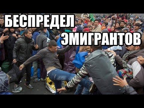 Эмигранты разносят Европу. Фатальный беспредел. ДОКУМЕНТАЛЬНЫЙ ФИЛЬМ 2017