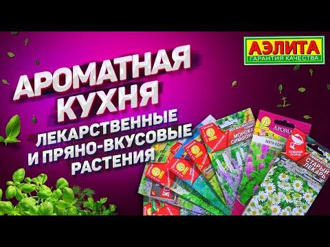 Ароматная Кухня. ЗДОРОВО и ВКУСНО. Лекарственные и пряно-вкусовые растения.