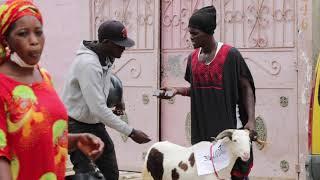 Vendre un mouton de Tabaski à 35 mil (Camera Cachee Mahfousse)