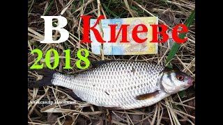 Рыбалка на фидер ловля плотвы весной на реке Днепре в Киеве 2018