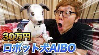 30万円我が家に犬がやってきた!AIBO