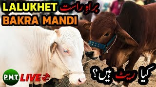 lalukhet bakra mandi 2018 latest video - मुफ्त