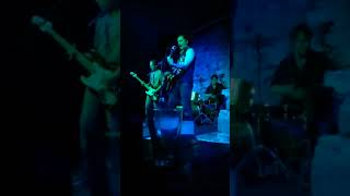 Video Stray Cat Strut - Sharp Roosters