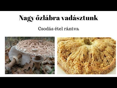 Gomba giardiasis