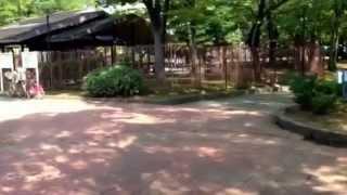 大谷田公園のイメージ
