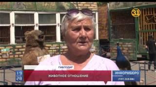 Зоозащитники  требуют закрыть передвижной зоопарк