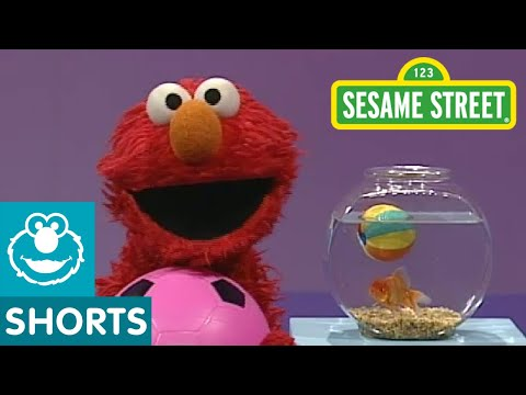 Sesame Street: Elmo's World: Play Ball!
