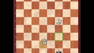 Как поставить мат ладьей и королем в шахматах