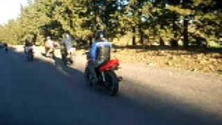preview picture of video 'biker boyz of tiaret 9'