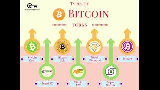 Munzmarktkappe Bitcoin Gold