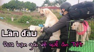 Củ Cải lần đầu dẫn bạn gái  về quê ăn Tết, đi xe máy 120km | I And My Dogs Come Back Home For Tet