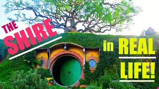 Experience the Shire in REAL LIFE! | Hobbiton, New Zealand