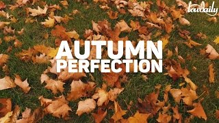 Autumn Perfection - Royal Garage. Video by Lowdaily