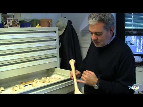 Atapuerca: El estudio de la Paleontología en la UBU. Capítulo VI