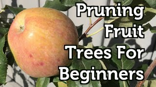Fall Pruning Fruit Trees for Beginners