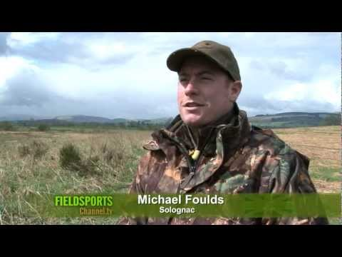 Pigeon shooting and roe stalking in Fife and Perthshire
