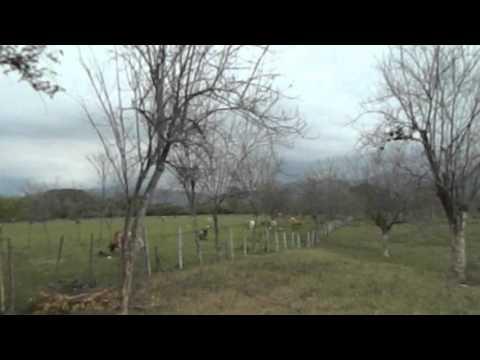 Fincas y Casas Campestres, Venta, Santander de Quilichao - $3.000.000.000