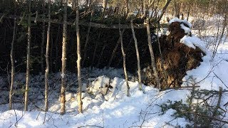 Building A Primative Winter Survival Shelter With Only An Axe. 1