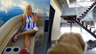 What happens when we leave on the boat.. (Dogs Home Alone)
