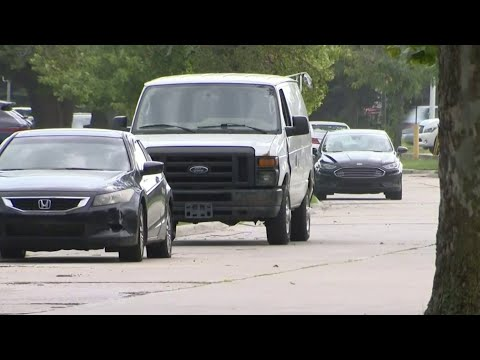 Neighbors fed up with speeding in Dearborn Heights