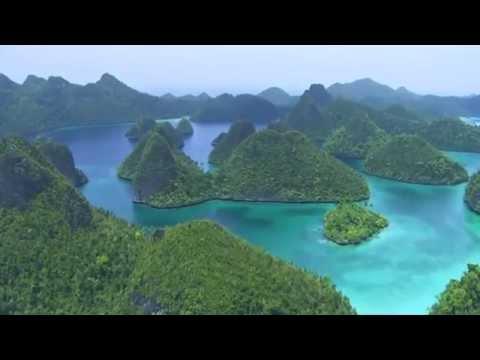 Planète Océan - Bande Annonce