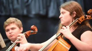 Southwest Florida Youth Orchestra