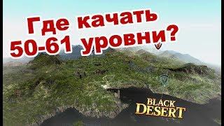 Black Desert (MMORPG) - Новая быстрая прокачка 50-61 🌍 Карта спотов в BDO