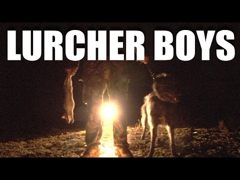 Lamping with Lurchers