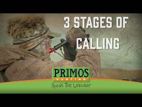 Randy Anderson's 3 Stages of Calling in Coyotes video thumbnail