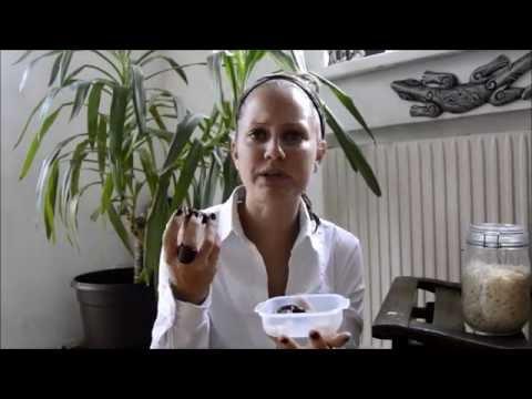 Gemüse und Obst nützlich bei Diabetes