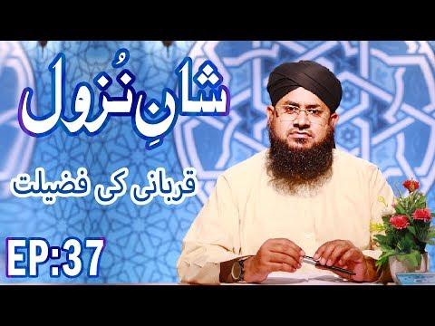 Qurbani Ki Fazilat ┇ Shan e Nuzool Ep 37 ┇ Eid ul Adha Special ┇ Zil Hajj ┇ Madani Channel