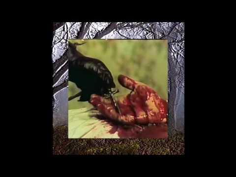 $uicideboy$ - Kill Your$elf Part II: The Black $uede $aga (Full Mixtape)