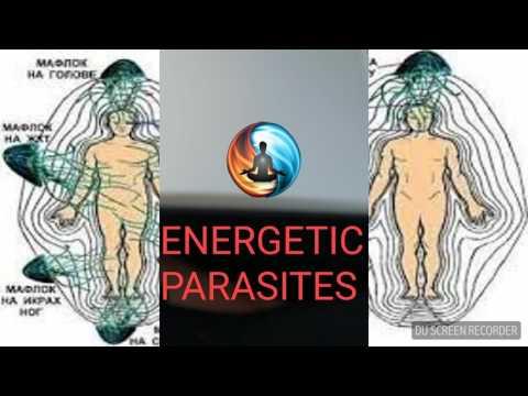 Kung paano haharapin ang mga parasites sa manok