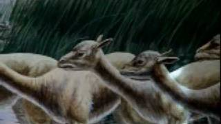 History Channel Mega Disasters - Yellowstone Eruption part 3 of 5