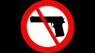 Could The U.S. Ban Private Gun Ownership?: Gun Talk Radio | 2.17.19 A