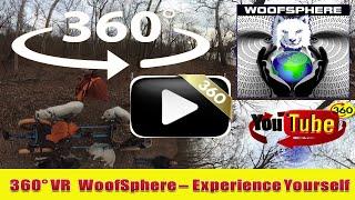 360 Videos | VR | Virtual Reality | WooFSphere | FurWheeling 360º Timelapsed